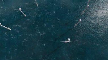 As turbinas poder gerador eólico no oceano — Vídeo stock