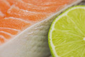 Fresh trout with lime close up — Stock fotografie