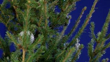 Decorating Christmas tree — Stock Video