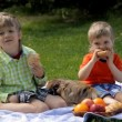 Children sitting on grass with dog in the park and eating — Stock Video #73554691