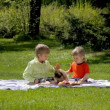 Children with a dog sitting on green grass in the park in spring — Stock Video #73555957