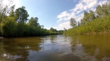 Calm river in the forests and fields — Stock Video