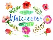 Vector watercolor aquarelle flowers and leaves. — Stock Vector