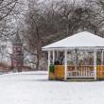 Winter Parklife — Stock Photo #78409102
