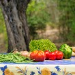Vegetables in French garden — Stock Photo #52101683
