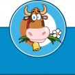 Cartoon Label With Cow — Stock Photo #54017719