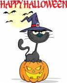Halloween Black Cat With A Witch Hat On Pumpkin Character And Text — ストック写真