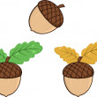 Acorn With Oak Leaves Cartoon Graphic Illustrations. Collection Set — Stock Photo #54654859