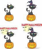 Halloween Black Cat With A Witch Hat On Pumpkin Character. Collection Set — Stock Photo