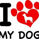 I Love My Dog — Stock Vector #61064857