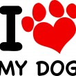 I Love My Dog — Stock Vector #61064991