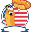 King Hot Dog On American flag — Stock Vector #61071097