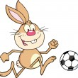 Rabbit Playing With Soccer Ball. — Stock Vector #61078669