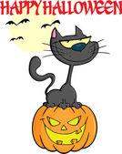 Halloween zwarte kat op pompoen — Stockvector