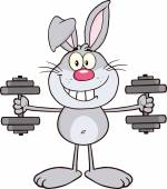 Rabbit Training With Dumbbells. — Vector de stock