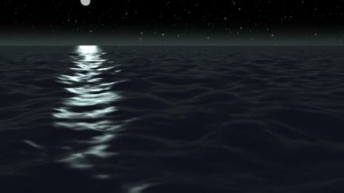 Moon light over ocean at night — Stock Video