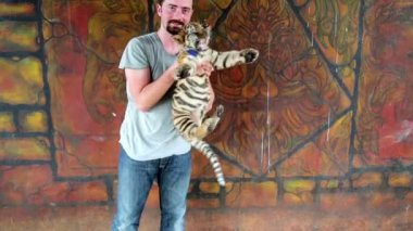 Tourist man playing with baby tiger — Stok video
