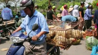 Carrying market with motorbike — Stockvideo