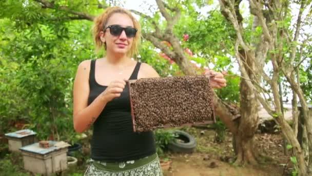 Colmena de miel de explotación de mujer — Vídeo de stock
