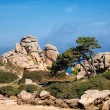 Atlantic ocean coast in Brittany — Stock Photo #55723853