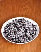 Frosted black currant in a plate — Stok fotoğraf