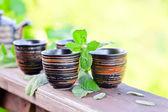 Peppermint tea — Stock Photo