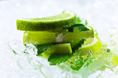 Lime slices and peppermint — Stock Photo