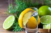 Gin with lemon — Stock Photo