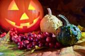 Pumpkins and cranberry  — Stock Photo
