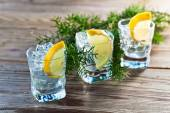 Gin with lemon and ice  — 图库照片