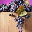 Crop of grapes for wine manufacture — Stock Photo #56832087