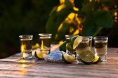 Oro tequila con sal y limón — Foto de Stock