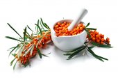 Sea-buckthorn berries  isolated on white  — Stock Photo