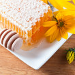Honeycomb and yellow flowers — Stock Photo #67270719