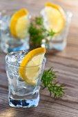 Buz ve limon ile cin — Stok fotoğraf