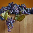 Crop of grapes for wine manufacture — Stock Photo #70911233