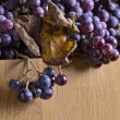 Crop of grapes for wine manufacture — Stock Photo #70911259