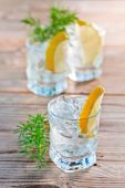 Gin and tonic — Stock Photo