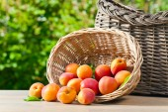 Saftige Reife Aprikosen — Stockfoto