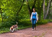 Woman with beagle walking in the park — Stock Photo