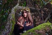 Ведьма в темный лес — Стоковое фото