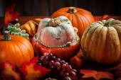 Pumpkins for Thanksgiving and  Halloween — Stok fotoğraf