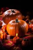 тыквы на день благодарения и хэллоуин — Стоковое фото