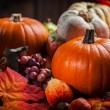 Pumpkins for Thanksgiving and Halloween — Stock Photo #53481215