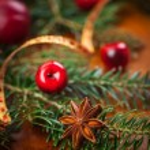 Christmas decoration — Stock Photo #53481477