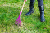 Cleaning green lawn by rake — Stock Photo