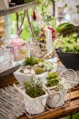 Garden decoration shabby chic style — Stock Photo