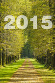 The way to new year 2015 — Stock Photo