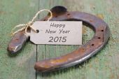 New year with horse shoe as talisman for good luck — Stock Photo