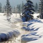 Winter landscape in Bavaria, germany — Stock Photo #69305577